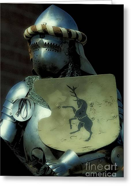 Knight 9 Greeting Card by Bob Christopher