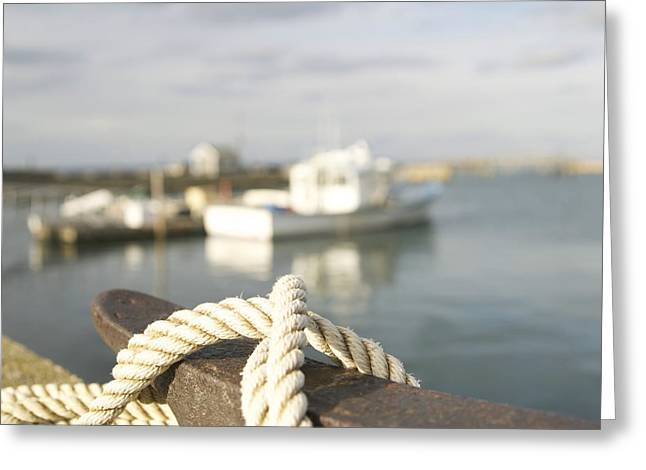 Knot Going Far Greeting Card by Eugene Bergeron