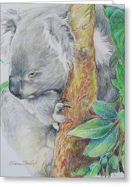 Koala Nap Time Greeting Card