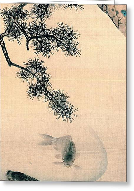 Koi And Pine Branch 1790 Greeting Card by Padre Art