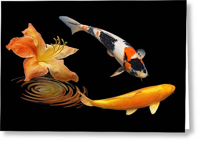 Koi With Azalea Ripples Greeting Card