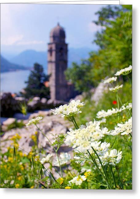 Kotor Wildflowers Greeting Card by Saya Studios
