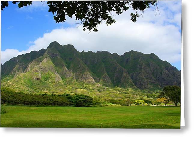 Kualoa Park Hawaii Greeting Card by Kevin Smith