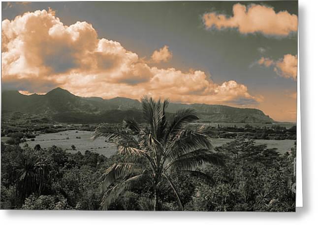 Kuhio Hwy -kalihiwai Bridge Lookout Kauai Hawaii  Greeting Card by Douglas Barnard