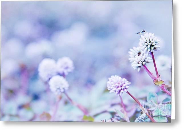Kula White Greeting Card by Sharon Mau