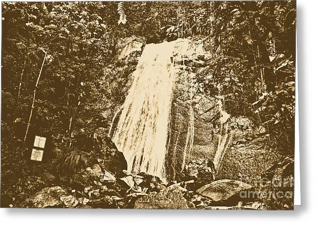 La Coca Falls El Yunque National Rainforest Puerto Rico Print Rustic Greeting Card by Shawn O'Brien