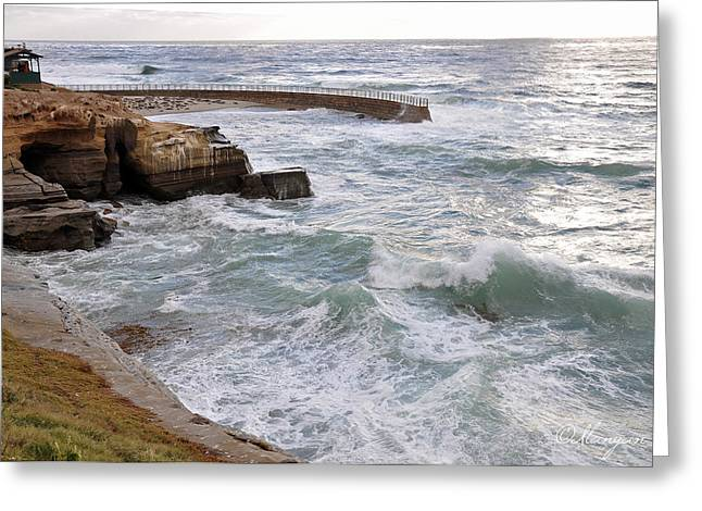 La Jolla Ca Greeting Card by Gandz Photography