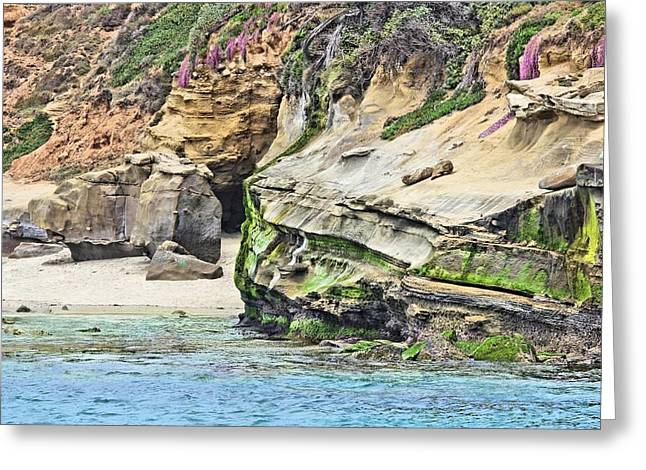 La Jolla Cliffs Greeting Card