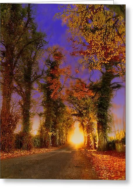 La Lanterne Du Jour Greeting Card