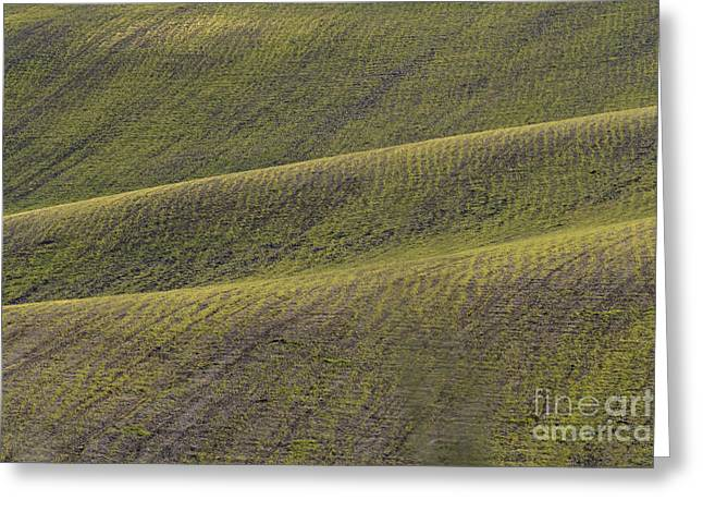La Mancha Landscape - Spain Series-dos Greeting Card by Heiko Koehrer-Wagner