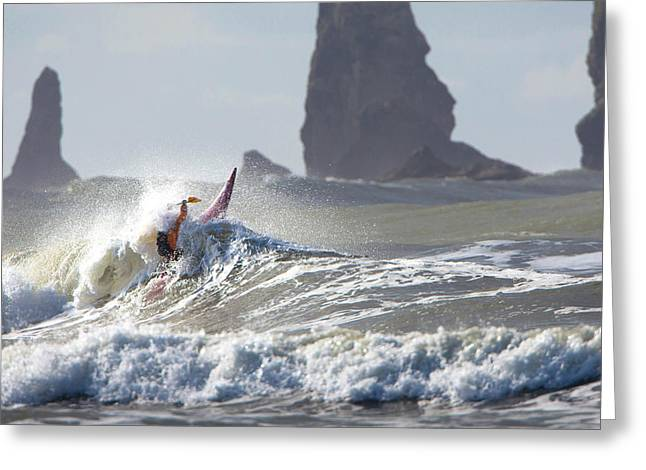 La Push Pummel And Sea Stacks Greeting Card by Gary Luhm