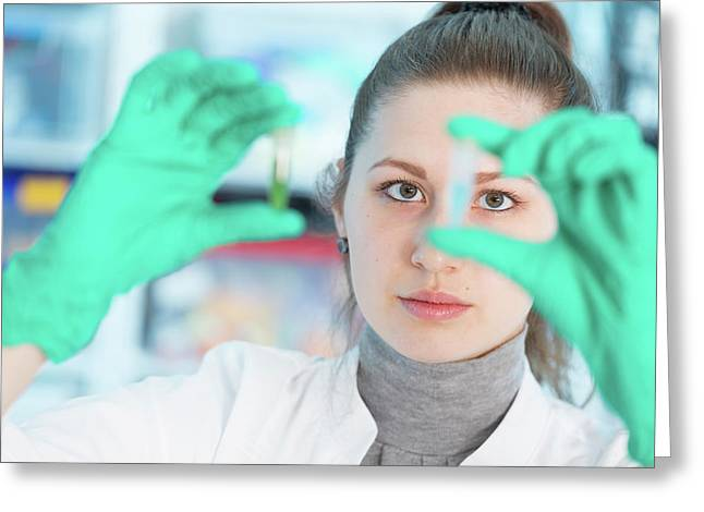 Lab Assistant Holding Samples Greeting Card