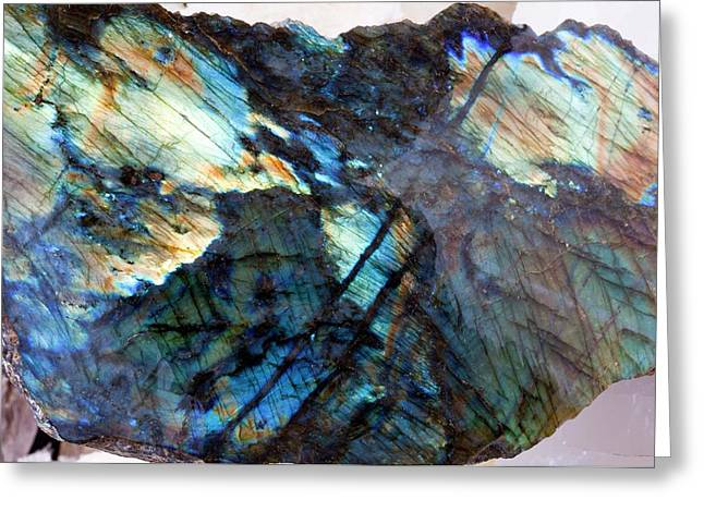 Labradorite Greeting Card by Dirk Wiersma