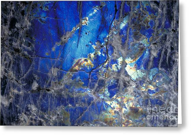 Labradorite Greeting Card by Gregory G. Dimijian