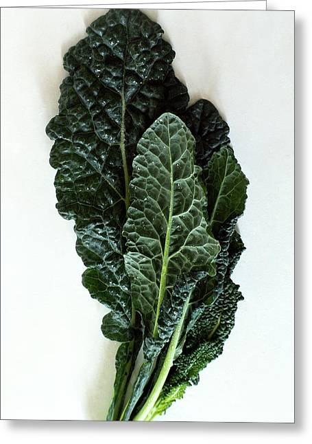 Lacinato Kale Greeting Card