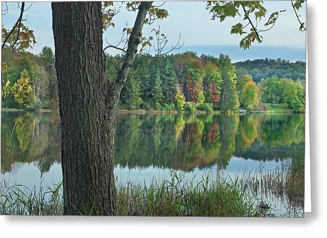 Lackawanna Lake, Lackawanna State Park Greeting Card