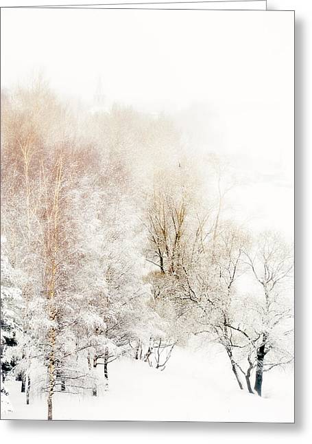 Lacy Winter 1 Greeting Card