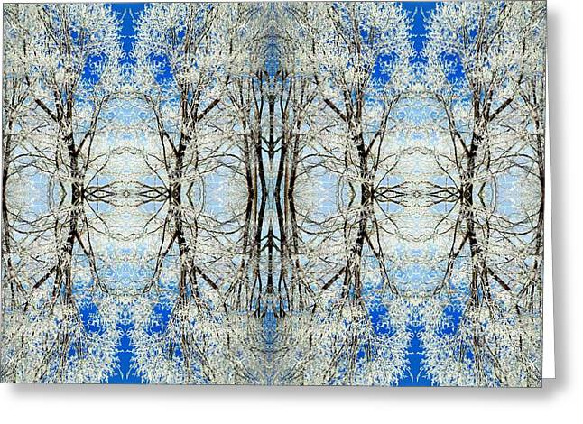 Lacy Winter Trees Abstract Art Photo Greeting Card