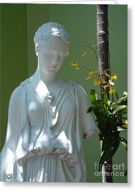 Lady In Garden Greeting Card