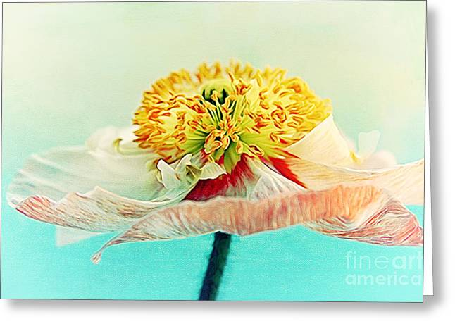 Lady Poppy 2 Greeting Card by Angela Doelling AD DESIGN Photo and PhotoArt