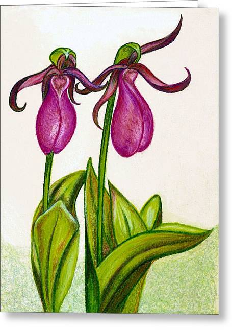 Lady's Slipper Greeting Card