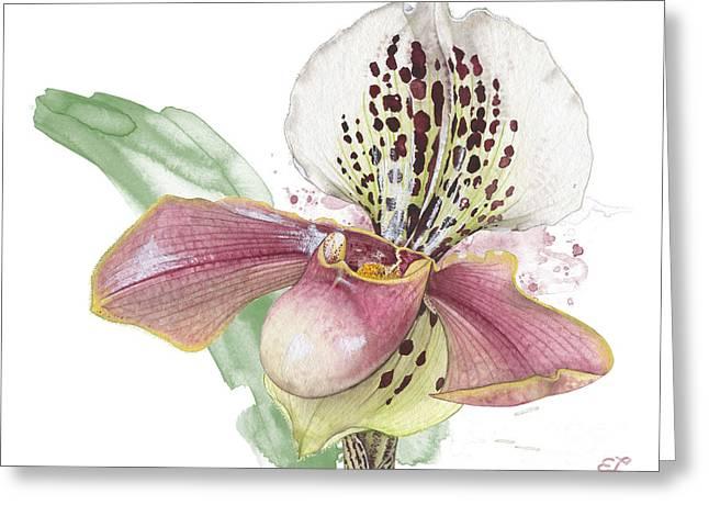 Ladys Slipper - Orchid 14 - Elena Yakubovich Greeting Card by Elena Yakubovich