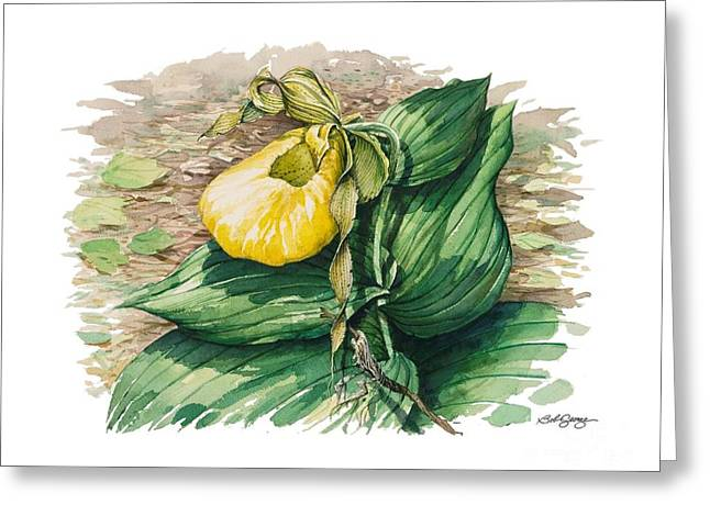 Greeting Card featuring the painting Ladyslipper by Bob  George