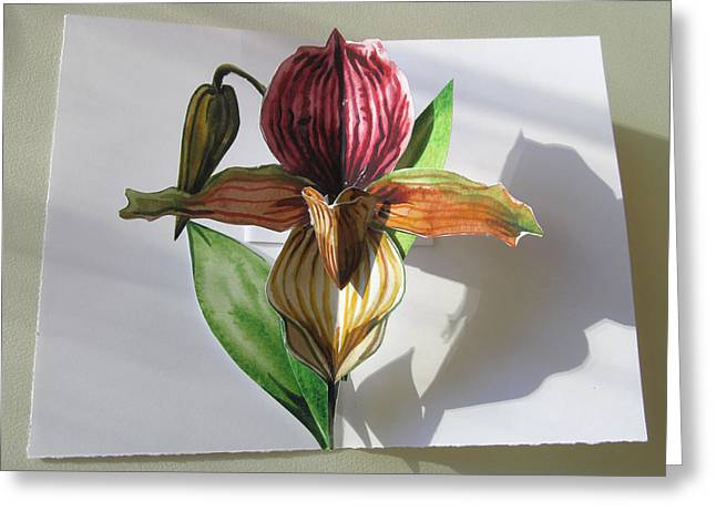 Ladyslipper Pop Up Card Greeting Card