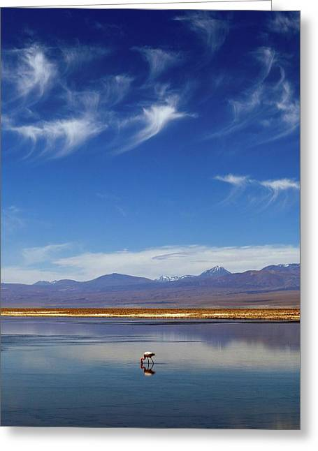 Lagoon And Volcanoes Greeting Card by Babak Tafreshi