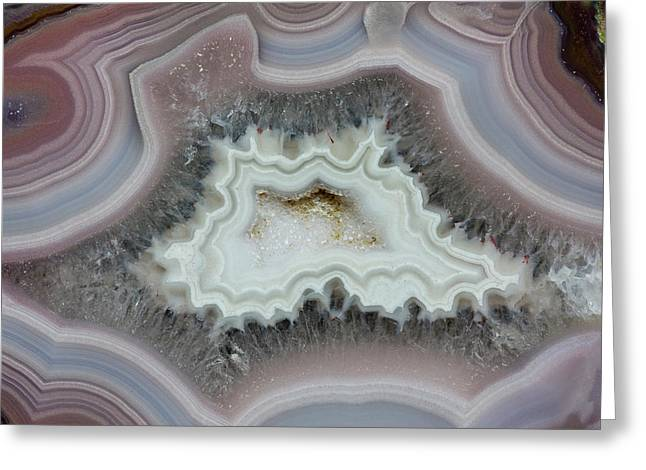 Laguna Agate, Mexico Greeting Card by Darrell Gulin