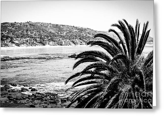 Laguna Beach California In Black And White Greeting Card