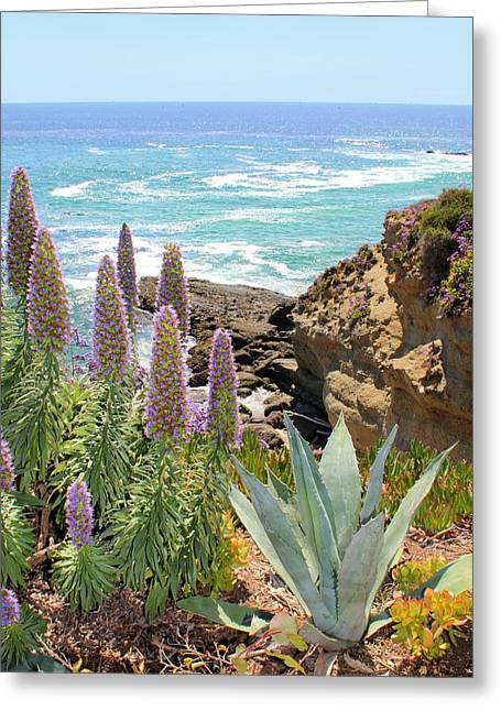 Laguna Coast With Flowers Greeting Card