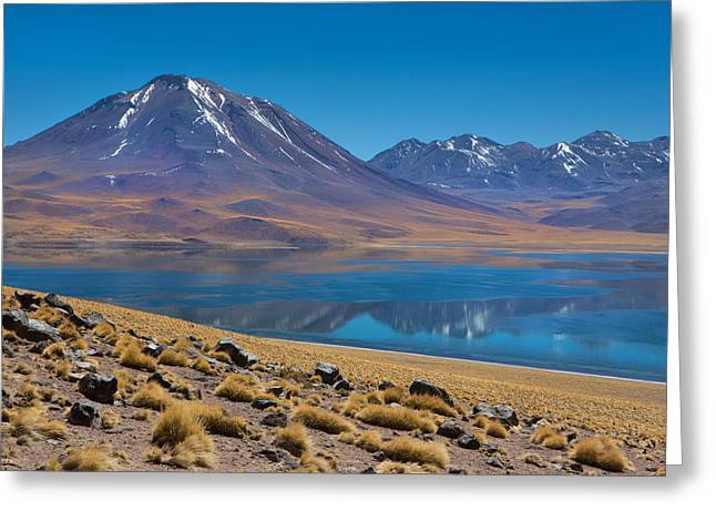 Laguna Miscanti Greeting Card