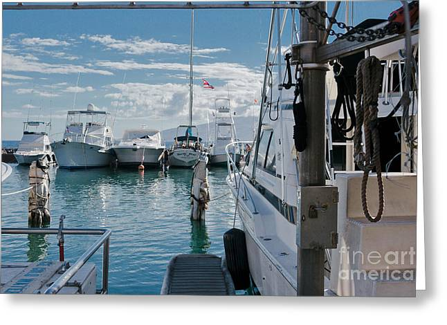 Lahaina Harbour Maui Hawaii Greeting Card
