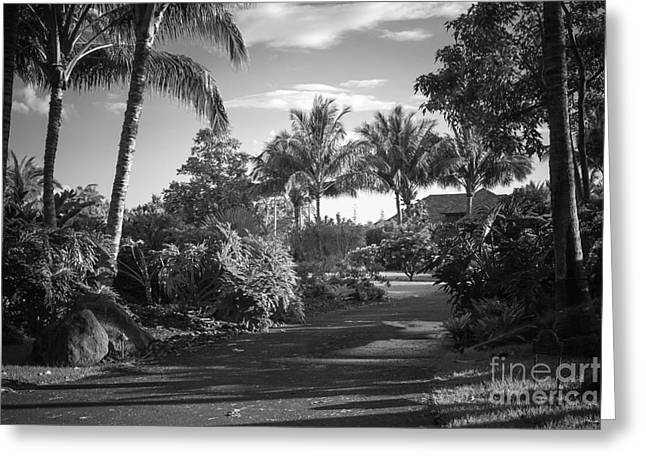 Lahaina Palm Shadows Greeting Card by Sharon Mau