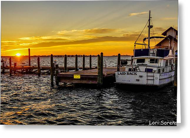 Laid Back Morning Greeting Card by Sandy Banks Photography