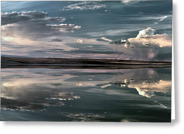 Lake Abert 11 Greeting Card by Leland D Howard