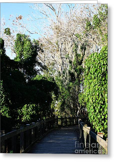 Greeting Card featuring the photograph Lake Apopka Boardwalk by Chris Thomas