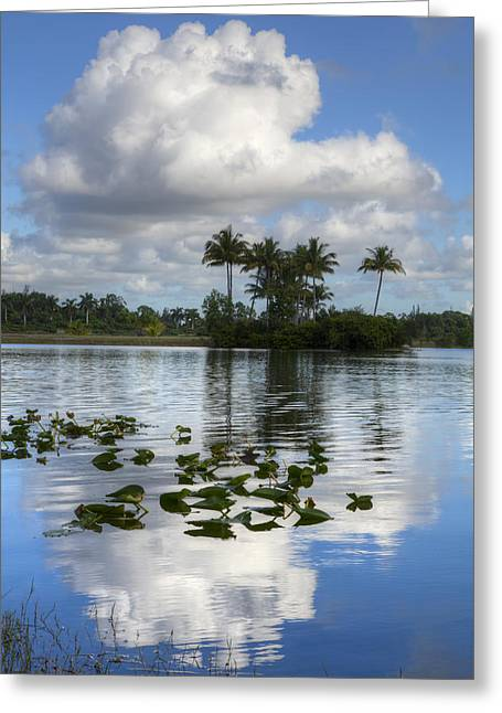 Lake At The Park Greeting Card by Debra and Dave Vanderlaan
