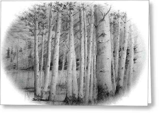 Greeting Card featuring the drawing Lake Birches by Jim Hubbard