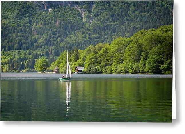 Lake Bohinj Bohinjsko Jezero, Triglav Greeting Card
