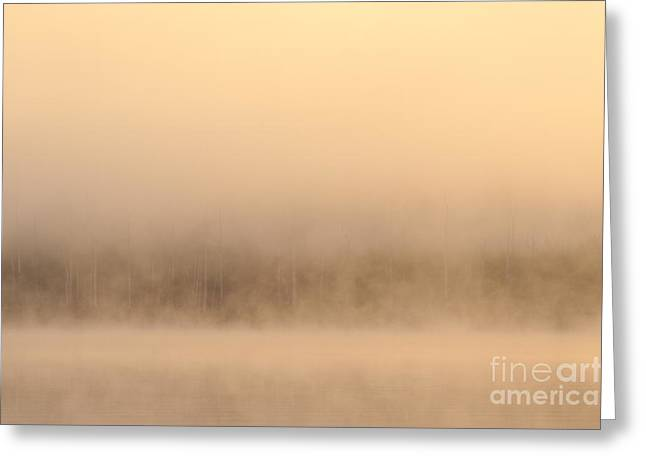 Lake Cassidy With Fog And Trees Along Shoreline Shrouded In Fog Greeting Card