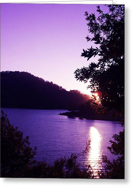 Lake Chabot On A Summer Eve Greeting Card
