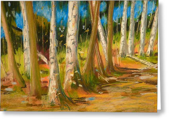 Lake Champlain Woods Greeting Card by Valerie Lynch