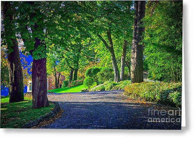 Lake Como Path Greeting Card