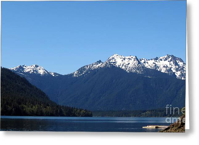 Lake Cushman - Olympic National Forest Greeting Card by Gayle Swigart