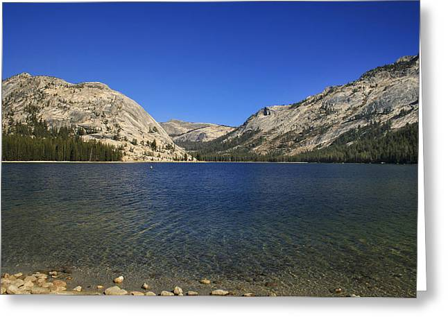 Greeting Card featuring the photograph Lake Ellery Yosemite by David Millenheft