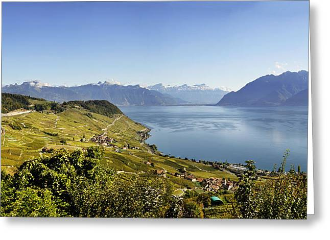 Lake Geneva Vineyards Greeting Card by Rob Hemphill