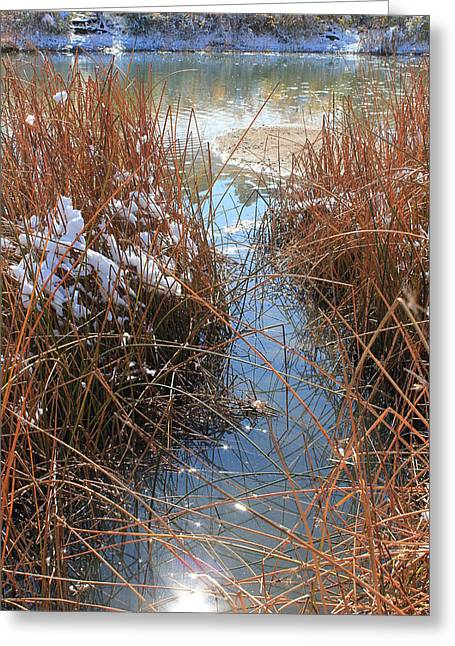 Greeting Card featuring the photograph Lake Glitter by Diane Alexander