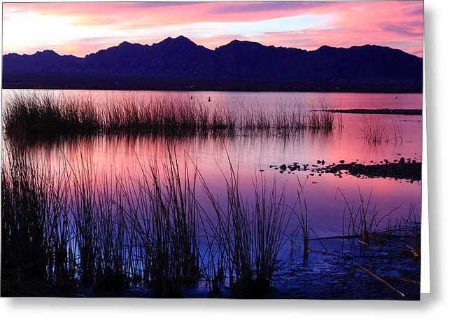 Lake Havasu Sunset Greeting Card by Eric Foltz